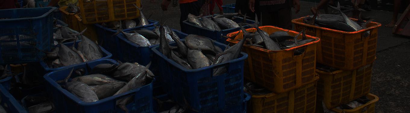 Warta Pasar Ikan